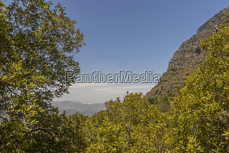 blick vom table mountain national park