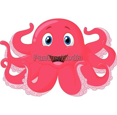 suesse oktopus cartoon