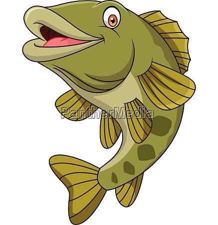 cartoon bass fisch isoliert auf weissem
