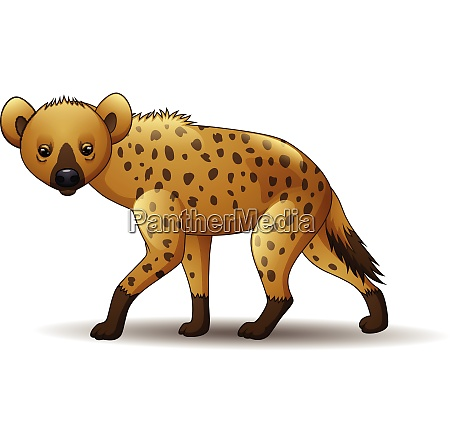cartoon lustige hyaene zu fuss isoliert