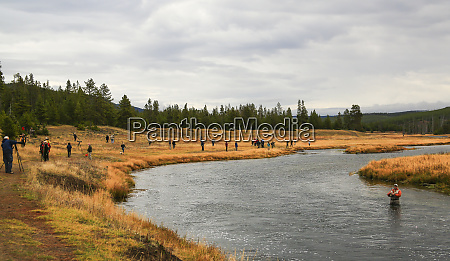usa wyoming yellowstone nationalpark angler und