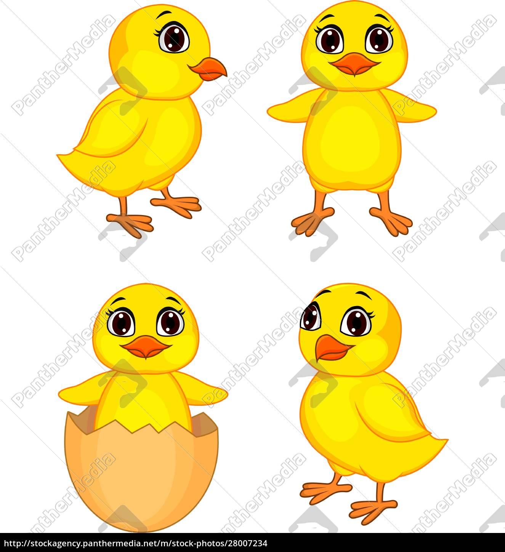 funny, chick, cartoon - 28007234