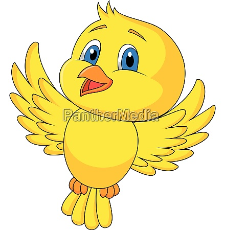 cute bird cartoon flying