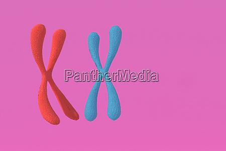 3d rendering von chromosom abstrakten wissenschaftlichen