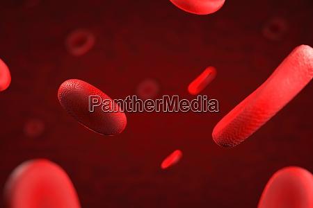 3d darstellung von erythrozyten oder rotem