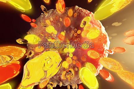 abbildung, der, synaptischen, kluft, zwischen, neurozellen - 28034756
