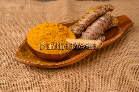 fresh whole turmeric roots on a