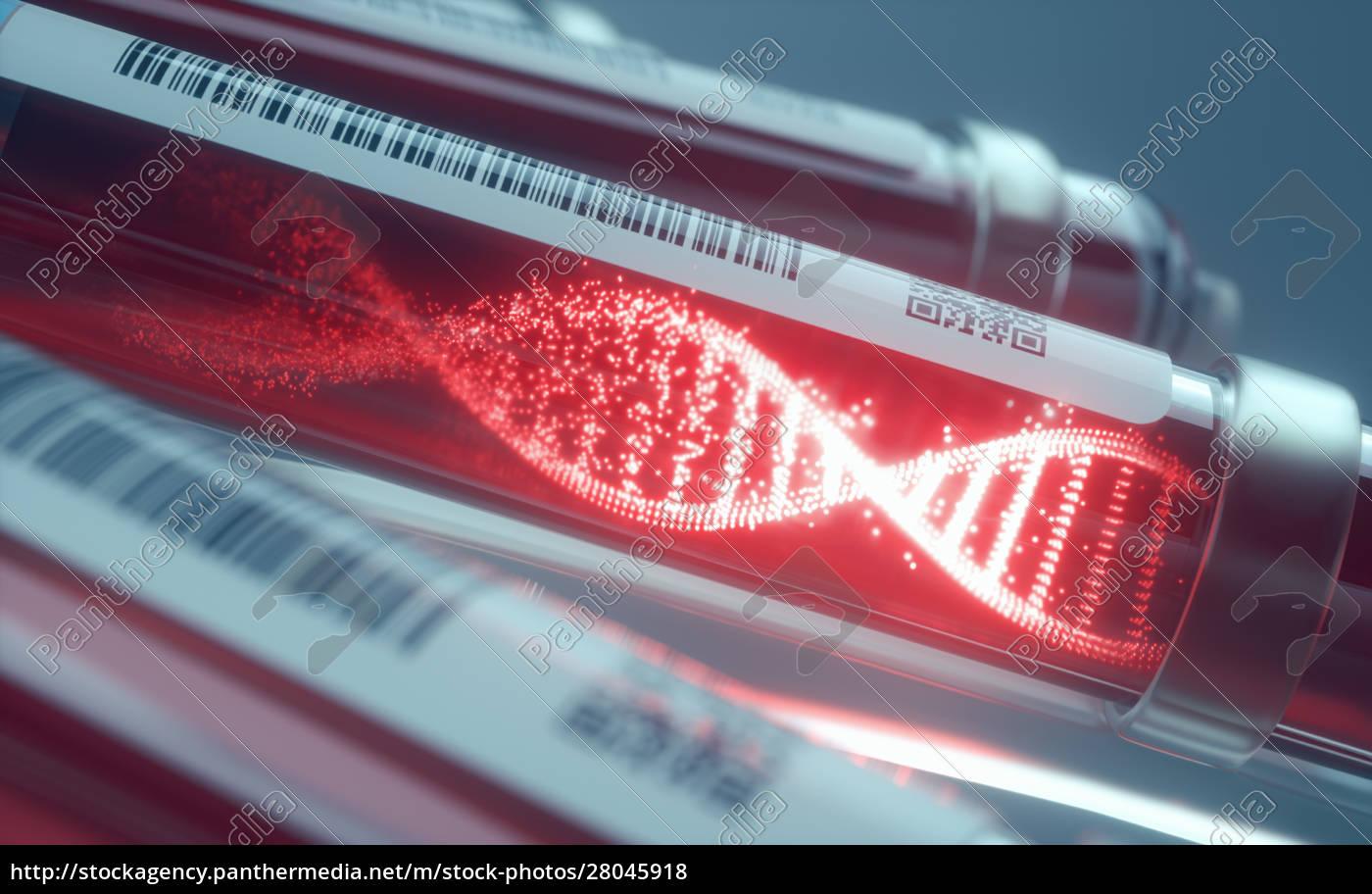 blutzellen, dna-wissenschaft, und, technologieforschung - 28045918