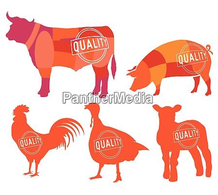 farm animals symbols collection butcher shop