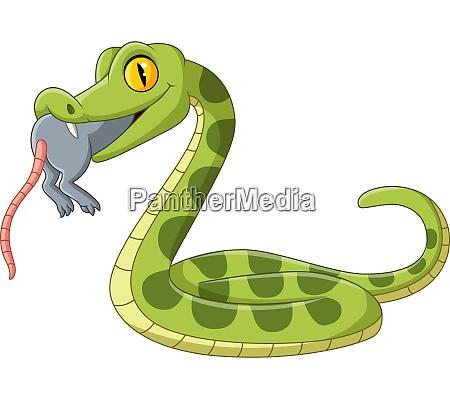 cartoon gruene schlange essen eine maus