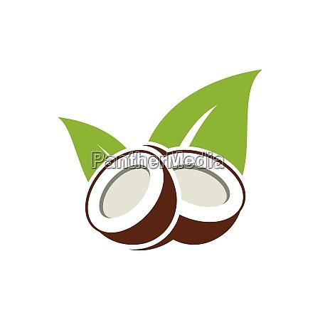 kokosnuss logo design natur produkt kokosoel