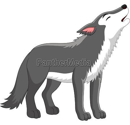 cartoon wolf heulen auf weissem hintergrund