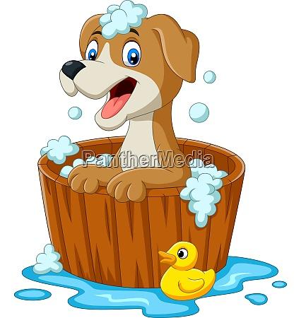 cartoon hund mit einem bad