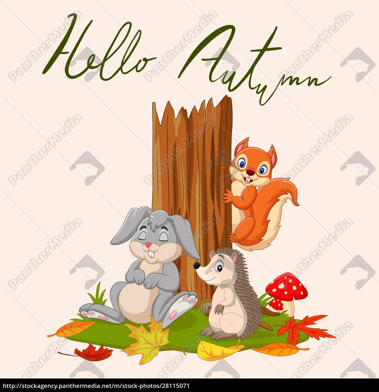 hallo, herbst, hintergrund, mit, wilden, tieren - 28115071