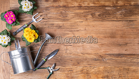 gardening tools and flowerpots