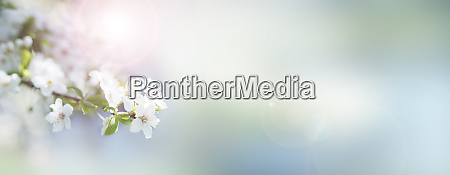 Medien-Nr. 28139525