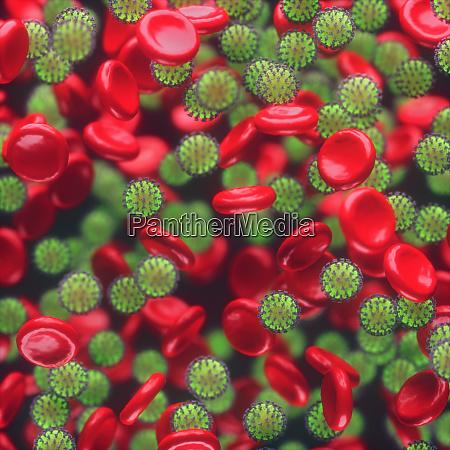 virus blood infections viruses covid 19