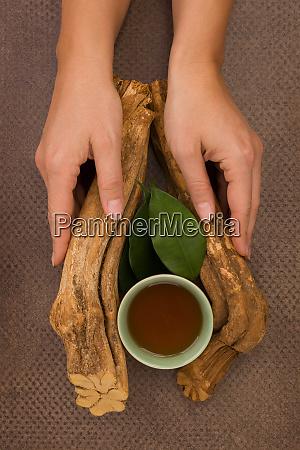 ayahuasca trinken