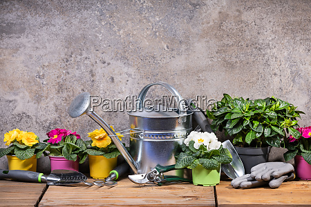 gardening tools and flowers