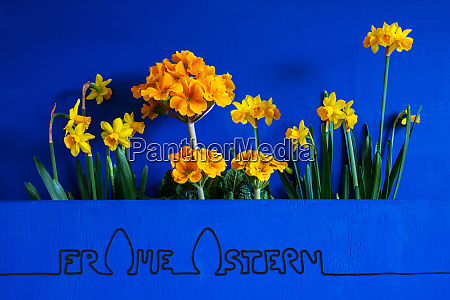 spring flowers narcissus calligraphy frohe ostern