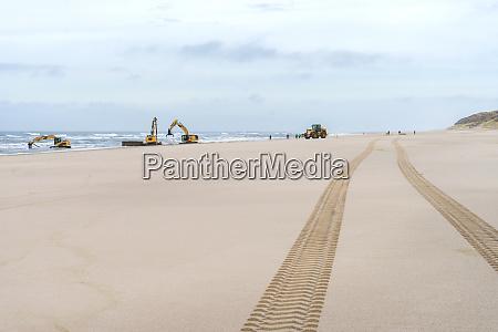 excavators work on the beach