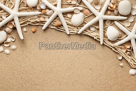 weisse seesterne auf sand hintergrund