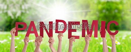 menschen haende halten wort pandemie graswiese