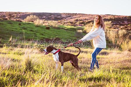 frecher hund zieht an der leine