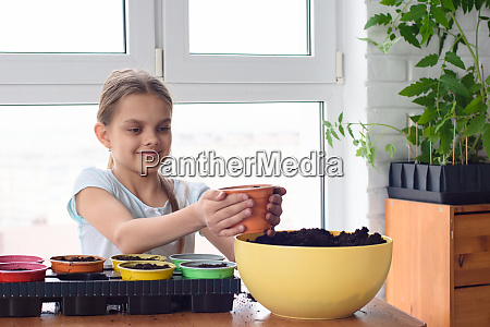 a girl poured earth for planting