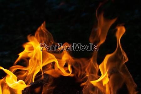 blaze feuer flamme textur hintergrund