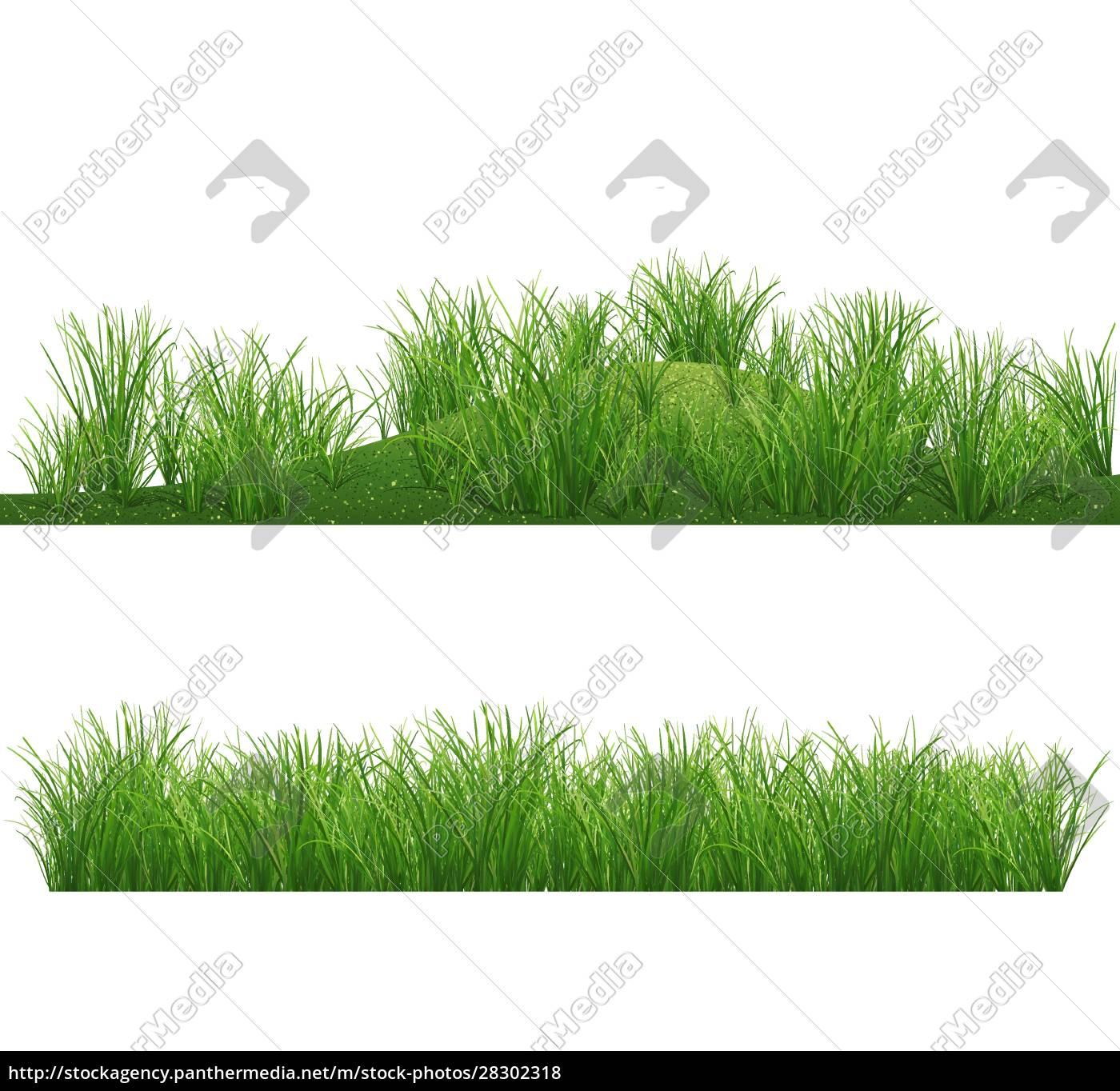 grass, background - 28302318