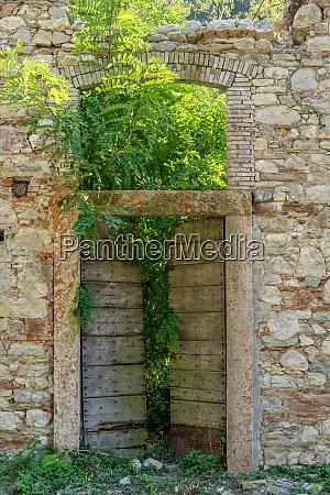 plants grow through the front door