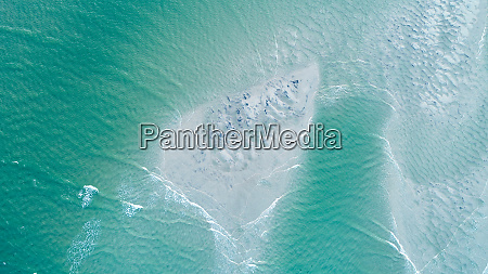 aerial view of sandy point yeppoon