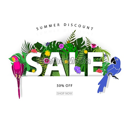 summer sale background or banner