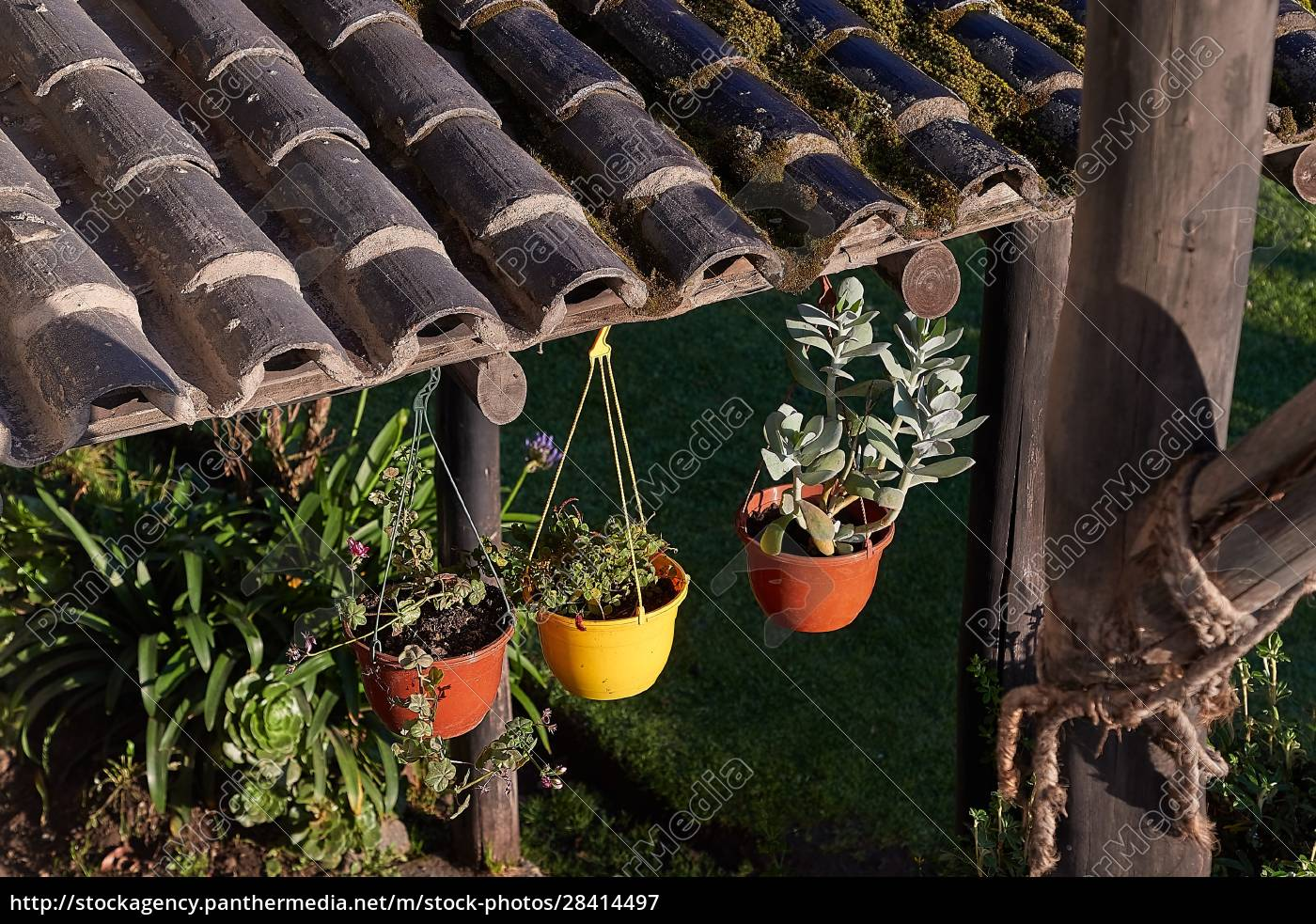 blumentöpfe, und, pflanzen, auf, einer, hinterhofterrasse - 28414497