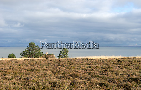 landscape on the north sea