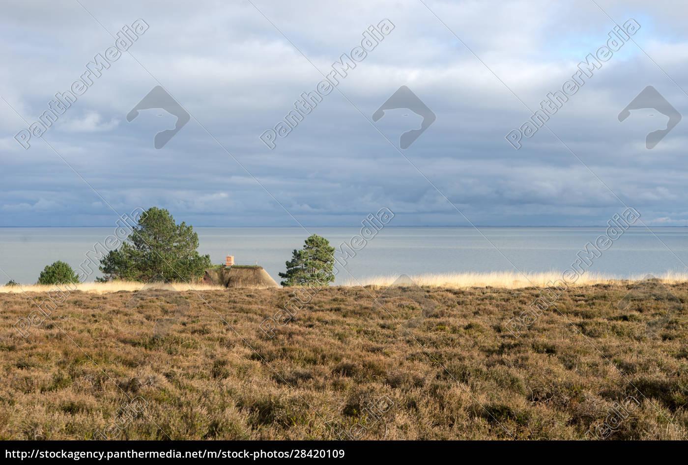 landschaft, an, der, nordsee, - 28420109