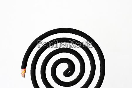 schwarze spiralmueckenschutzspule auf weissem hintergrund