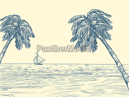 palmen meer kontur silhouette