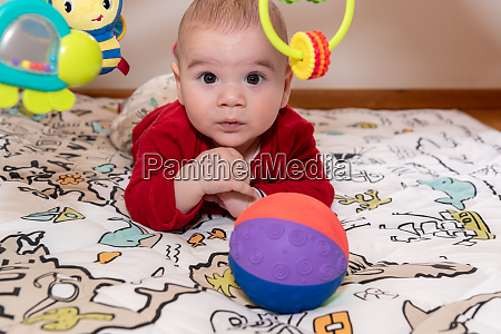 adorable, 6, months, old, little, baby - 28448795