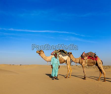 cameleer, (camel, driver), camels, in, rajasthan, - 28467399