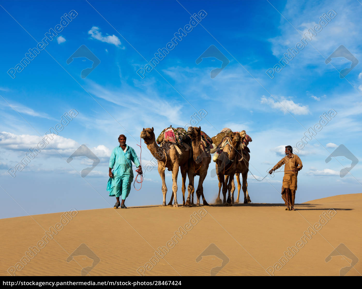 two, cameleers, (camel, drivers), with, camels - 28467424