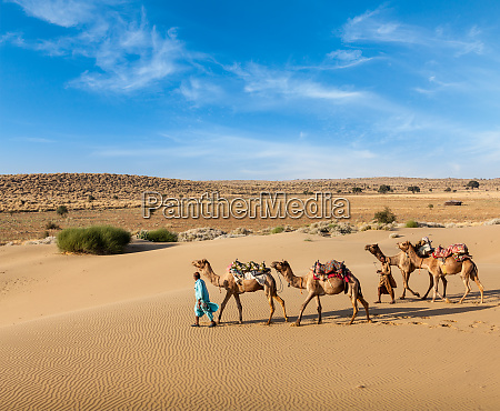 two, cameleers, with, camels, in, dunes - 28467442