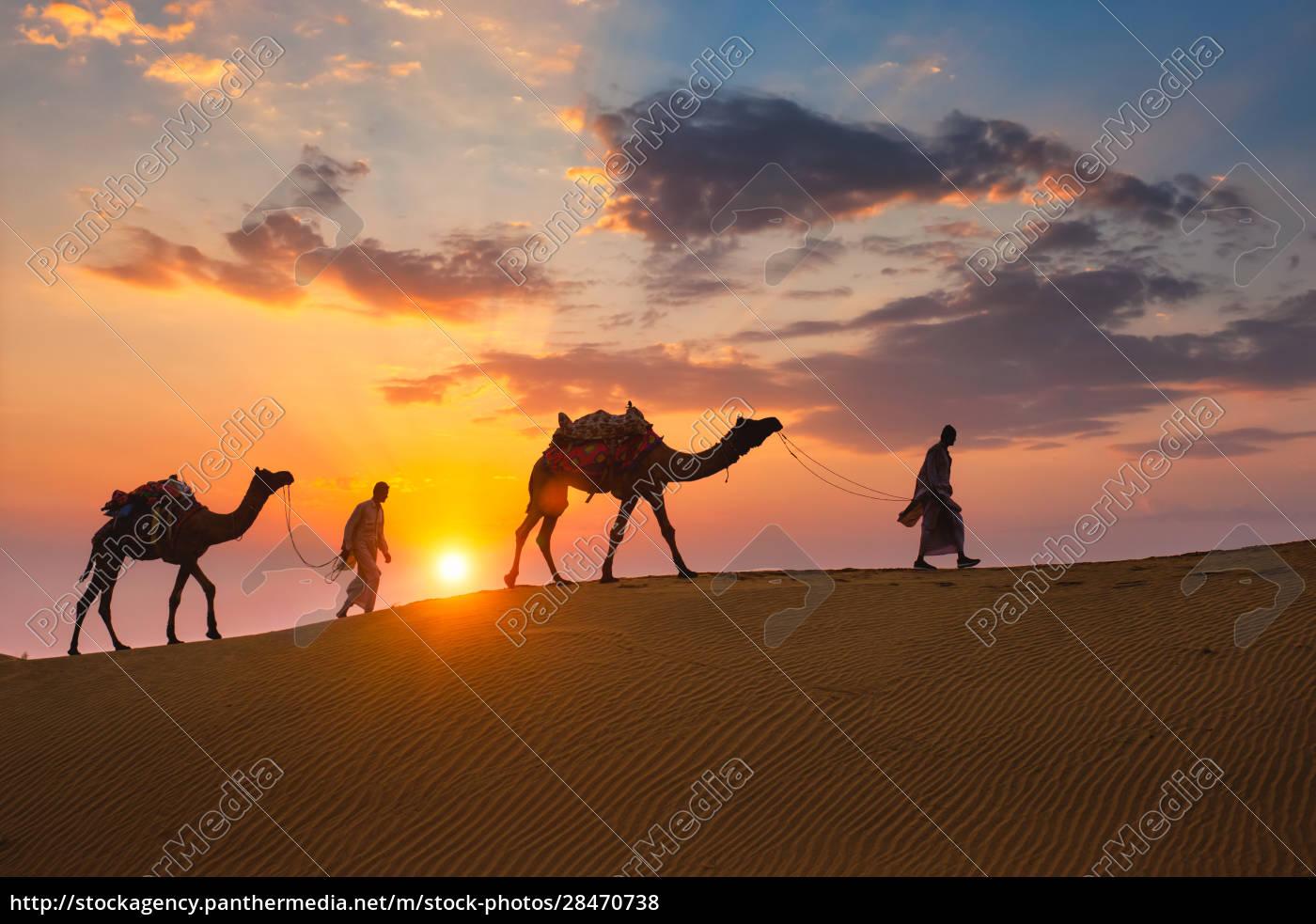 indische, kameltreiber, kamelfahrer, mit, kamelsilhouetten, in - 28470738