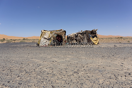 beduinenzelt in der marokkanischen wueste