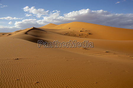 wuesten und sandduenenlandschaft bei sonnenaufgang sahara