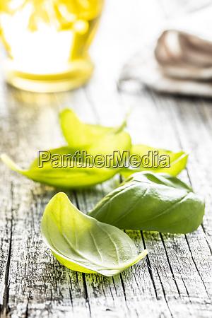 gruene basilikumblaetter auf weissem holztisch