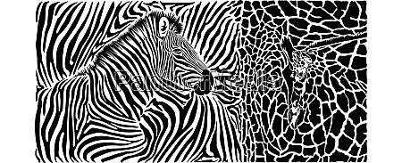 zebra und leopardenfellmuster mit koepfen