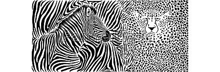 wildtierhintergrund vorlage mit zebra und