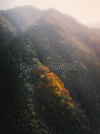 luftaufnahme der herbstfarben der berge rund